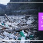 How Your Business Can Reduce Its Plastic Footprint
